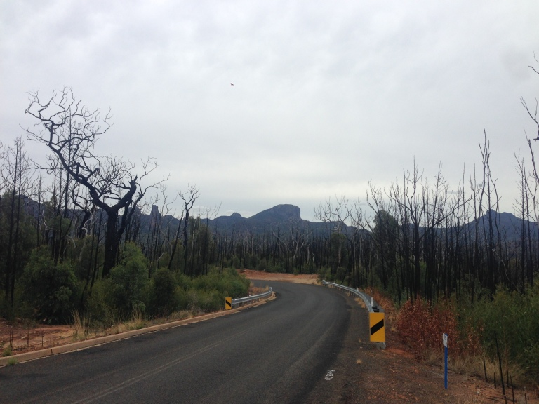 Warrumbungles2